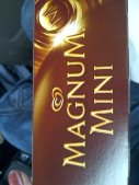 First time to try Magnum ice cream.