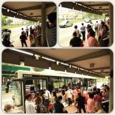 Singapore, Chinatown bus stop. (Mar.'12)